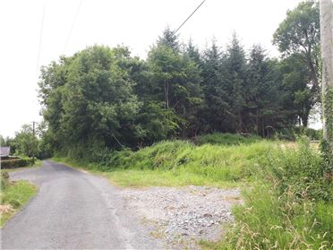 Main image of Forestry Lands, Kiltycarney, Jamestown, Leitrim