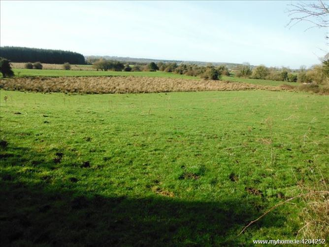 11.9 Acres Approx  Agri Land and F, Finea, Westmeath