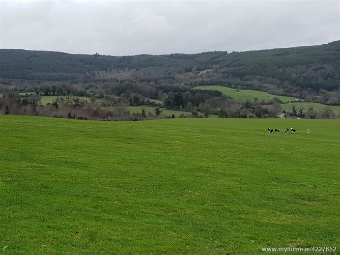 Main image for 0.75 Acres, Ballylusk, Ashford, Wicklow
