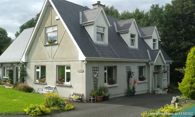 Photo of Musical family country living, Enniscorthy, Co. Wexford