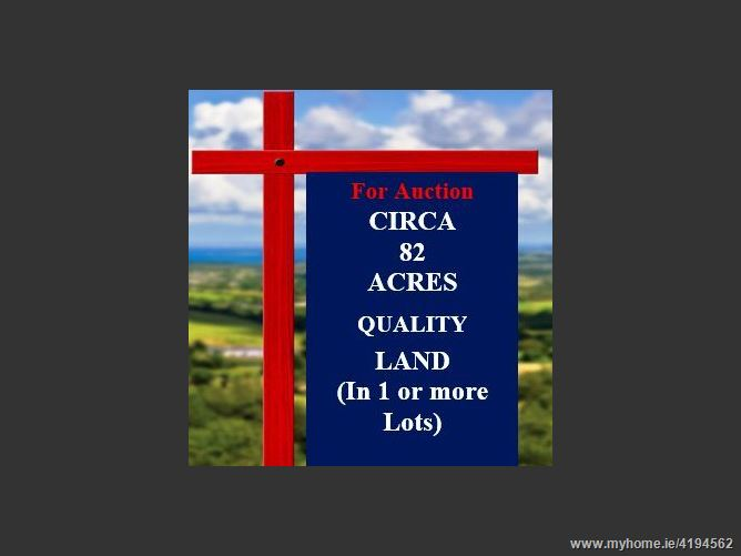 C. 82 acres of Agricultural Lands at Mooneen, Graiguenamanagh, Kilkenny