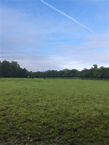 Main image for Church Field, Bellewstown, Meath