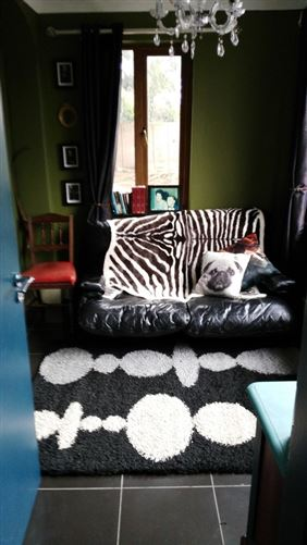 "Main image for Boutique triple room, ""Ashbourne Co Meath"