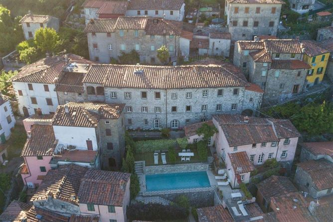 Main image for Green Tomatoes,Provincia di Lucca,Tuscany,Italy