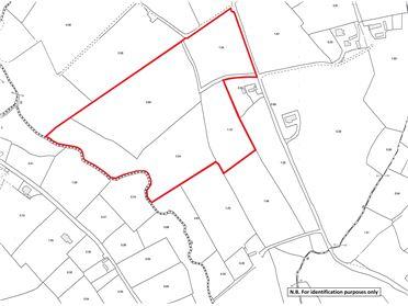 Photo of Lands at Drumestagh (Folios CN26819, CN8040 and CN7940), Ballyjamesduff, Co. Cavan