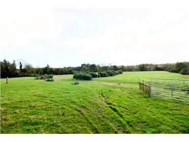 Main image of Ballinacoola, Glandoran, Carnew Road, Gorey, Co Wexford