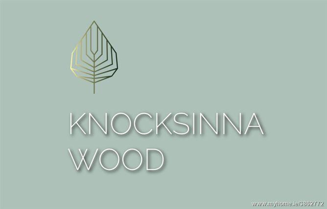 Photo of Knocksinna Wood, Blackrock, Dublin