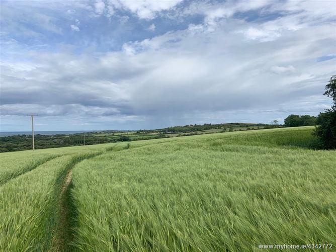 Garollagh, Clogherhead, Louth