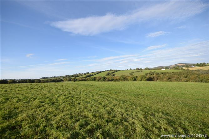 Clonogan & Ballyredmond, Clonegal, Wexford