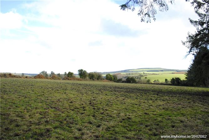 Land For Sale At Graigue, Aglish, Cappoquin, Co Waterford