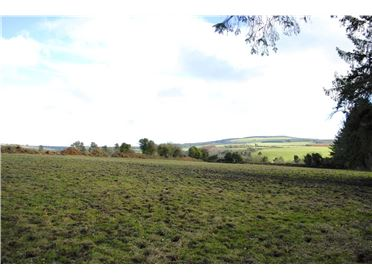 Photo of Land For Sale At Graigue, Aglish, Cappoquin, Co Waterford