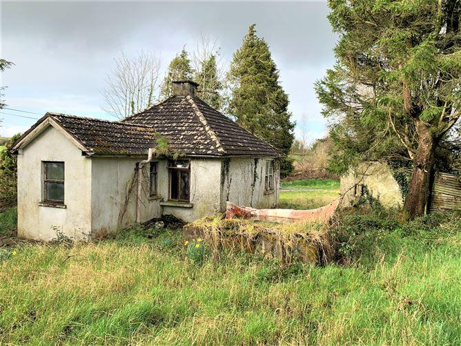 Main image for Drumamoodan, Hillstreet, Carrick-on-Shannon, Roscommon
