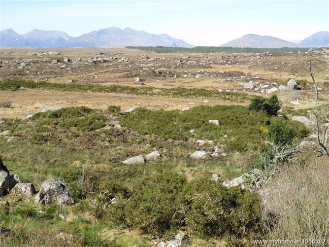 5.5 Acres Of Land To Let In Inver, Inver, Rosmuck, Galway