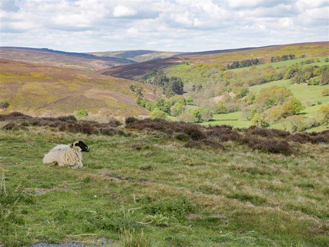 Main image for Esklets Cottage,Castleton, North Yorkshire, United Kingdom