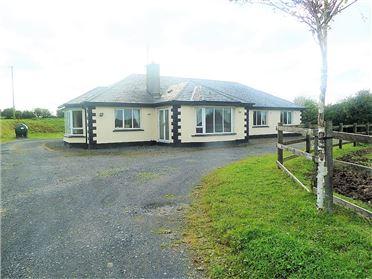 Photo of Barney, Breaffy, Castlebar, Mayo