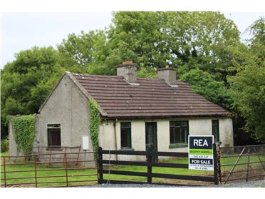 Main image of Cottage and Outbuildings on C.5 Acres at Punchersgrange, Milltown, Kildare