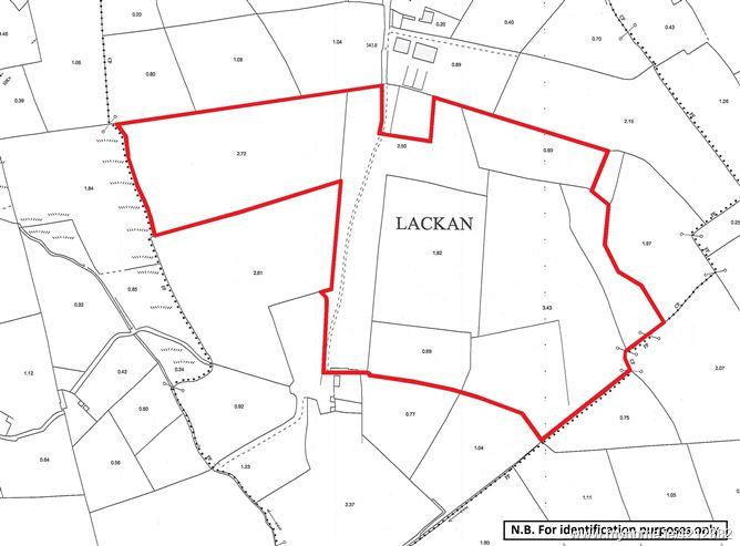 Lands (Folio CN14136F) at Lacken, Arva, Co. Cavan