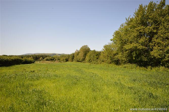 Main image for Loggan, Gorey, Wexford