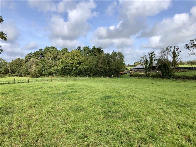 Main image for c. 46.2 Acres at Battlemount, Narraghmore, Kildare
