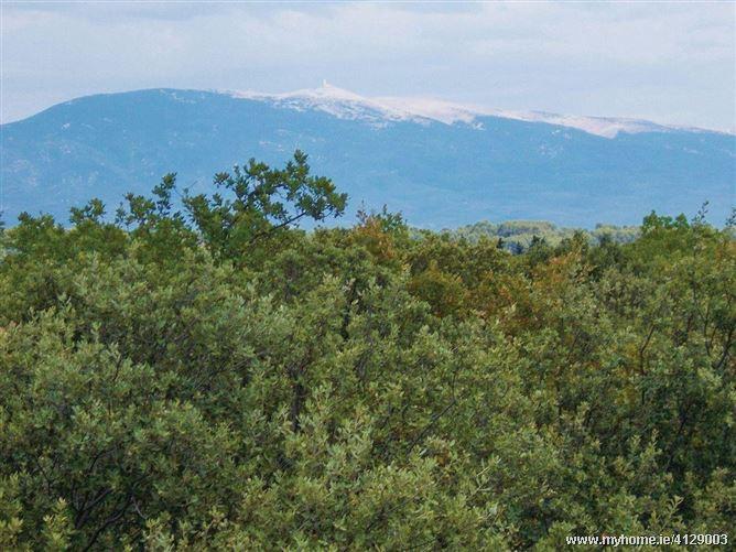 La Vue Des Montagnes,Carpentras, Provence-Alpes-Côte d'Azur, France
