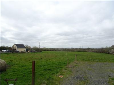 Dromelia, Murroe, Limerick