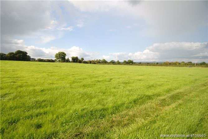 Photo of Approx. 36.127 Hectares/89.2 Acres, Clareen, Shinrone, Birr, Co Offaly