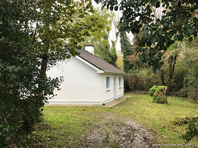 Main image for Cregg Wood Cottage, Oughterard, Galway