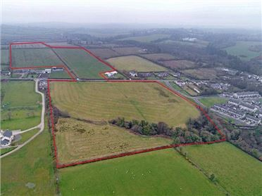 Main image of C.17.09 Ha (42.21 Acres), Oriel Road, Collon, Co Louth