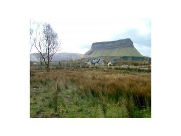 Photo of Mullaghnaneane,Grange