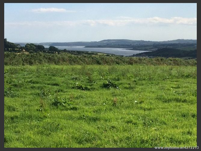 Farm, 13.4 Acres, Kilhile, Arthurstown, Co Wexford