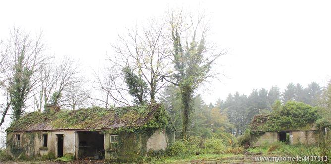 Cleendargan, Ballinamore, Leitrim