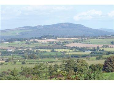 Main image of Shroughmore, Conary, Avoca, Wicklow