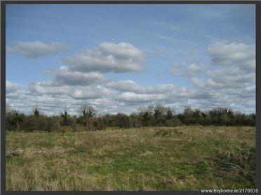 Main image of Clonkeen, Moydow, Longford, Longford