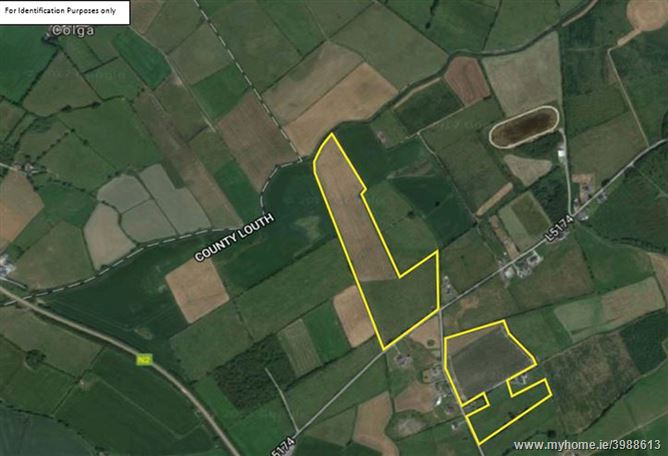 c.35.9 Acres (14.53 ha), Reaghstown, Ardee, Co. Louth - Prime Roadside Lands in Two Parcels. Folios: Part of LH6722F, LH9996F & LH27486