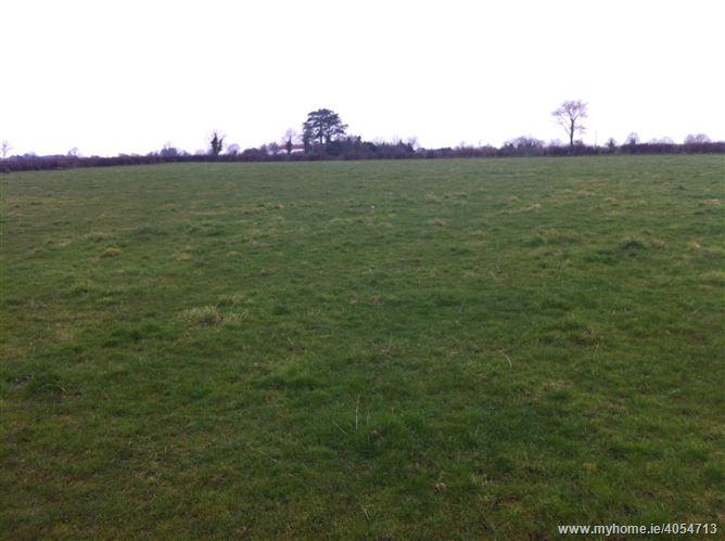 Ballyteague, Monasterevin, Co. Kildare - c. 40 acres