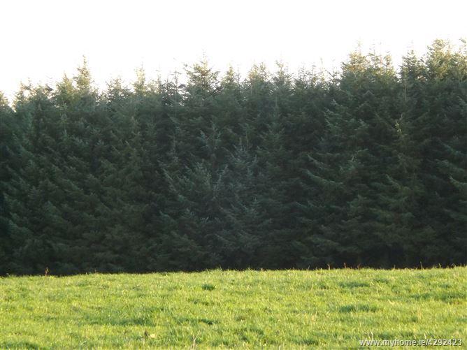 Main image for Clouncuggar, Caheragh, Drimoleague,   West Cork
