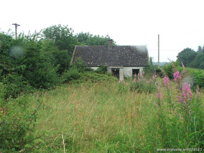 Tullynaskeagh East, Carrickmacross, Monaghan
