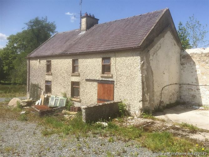 Two Storey Period Farmhouse on c. 0.91 Acre/ 0.37 Ha., Donard Demesne East
