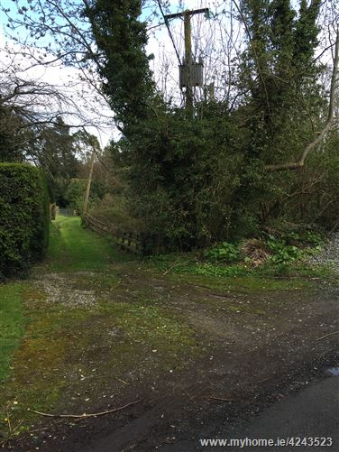 Main image for Kindlestown Hill, Bellevue Hill, Delgany, Wicklow