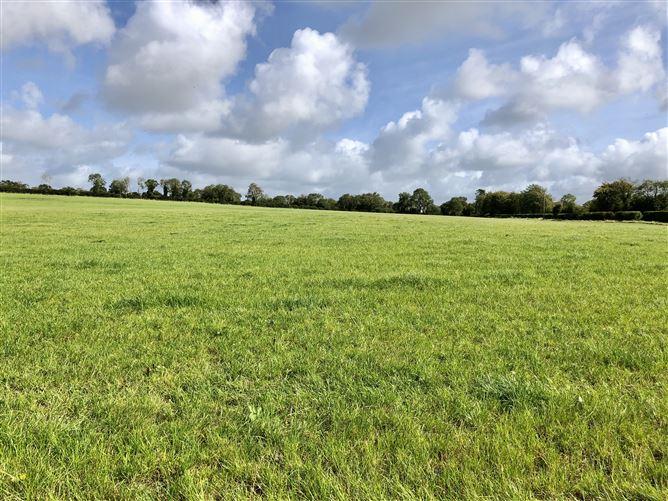 Main image for c. 80 Acres at Battlemount, Narraghmore, Kildare