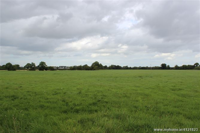 Photo of Monread Road, Naas, Co. Kildare - c. 47acres