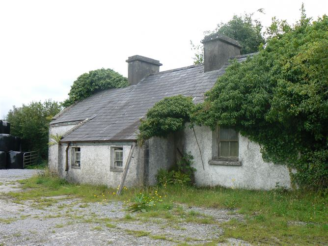 Main image for Tiaquin Demesne, Athenry, Co. Galway