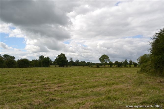 1.3 acre site Painstown, Donadea, Co. Kildare