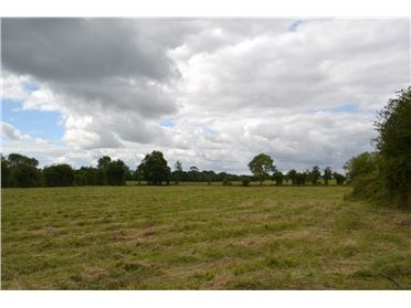 Photo of 1.3 acre site Painstown, Donadea, Co. Kildare