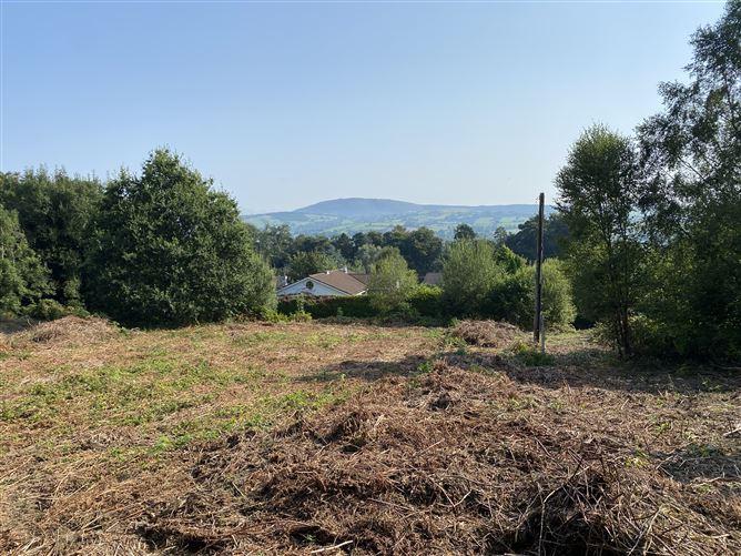 Main image for Site at Ballyvalley, Killaloe, Clare