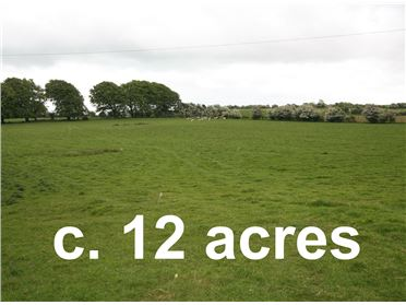 Main image of Carrickaneha, Drumraney, Westmeath