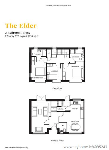 The Elder, Clay Farm, Leopardstown, Dublin 18