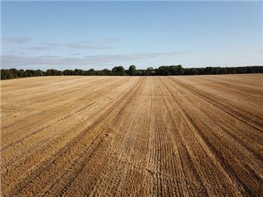 Photo of c. 57 Acre at Ballymacwilliam, Edenderry, Offaly