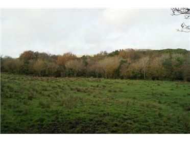 38 acre farm for sale Carradoan, Rathmullan, Co. Donegal