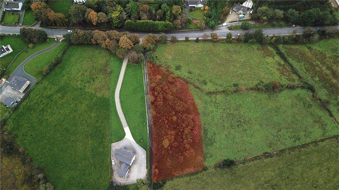 Main image for 0.43 HA (1.13 Acres),Forquar,Milford,Co Donegal